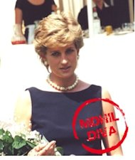 Princess Diana &#x002013; mDhil Diva