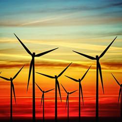 Bill Koch: Rich Enough to Stop the Wind