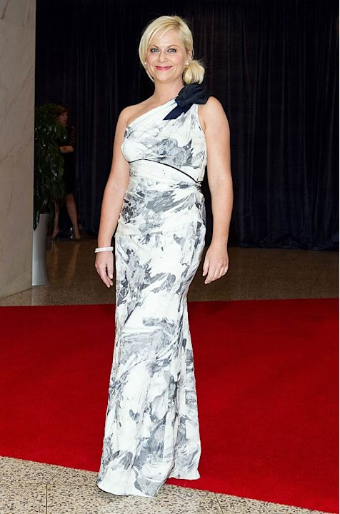 Amy Poehler White House Dnner