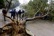 Palestinian firefighters prepare to remove a tree blocking a road in the West Bank city of Nablus, Wednesday, Jan. 9, 2013. A Palestinian official says the fiercest storm to hit the area in a decade has claimed the lives of two West Bank women who drowned after their car was caught in a flash flood unleashed by torrential rains. (AP Photo / Nasser Ishtayeh)