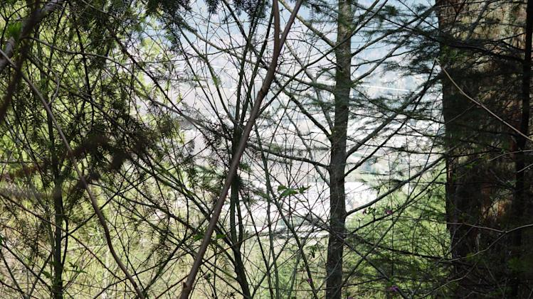 In this photo provided by the King County Sheriff's Deptartment on Friday, April 27, 2012, shows the view from bunker that deputies say belongs to a man suspected of killing his wife and daughter and holing up for days in the Cascade foothills east of Seattle. King County Sheriff's Sgt. Cindi West says photos found in Peter A. Keller's home helped them find the bunker Friday morning.  (AP Photo/Courtesy King Co. Sheriff's Dept.)