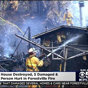 Fire Burns Through Structures, Vegetation In Forrestville