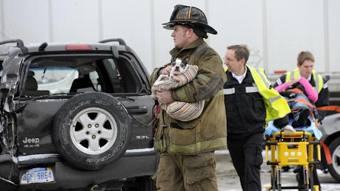 A firefigher holds a dog as emergency personnel responds to a multi-vehicle accident on Interstate 75  in Detroit, Thursday, Jan. 31, 2013. Snow squalls and slippery roads led to a series of accidents that left at least three people dead and 20 injured on a mile-long stretch of southbound I-75. More than two dozen vehicles, including tractor-trailers, were involved in the pileups. (AP Photo/The Detroit News, David Coates)