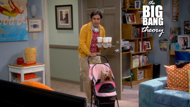 The Big Bang Theory - Better Husband