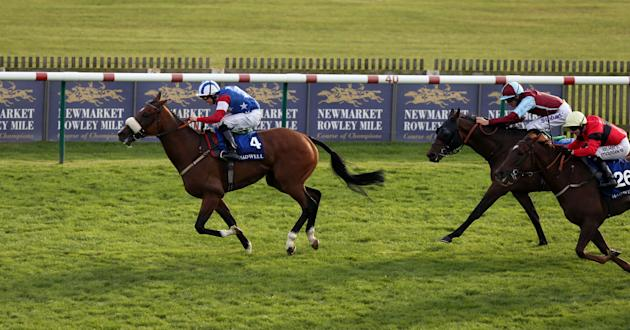 Horse Racing - The Cambridgeshire Meeting 2013 - Day Two - Newmarket Racecourse