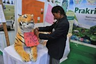 An activist ties a tag on a toy tiger on display at the Convention on Biodiversity in Hyderabad. An island-dwelling cockroach and a tiny snail were declared extinct while 400 plants and animals were added to a threatened &quot;Red List&quot; as global environment ministers meet in India