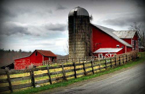 A State Divided: Upstate NY Wants to Secede Due to 'Vast Differences' With NYC