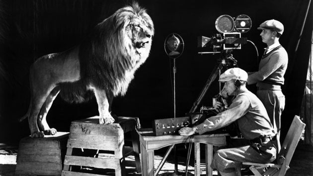Filming the MGM Lion