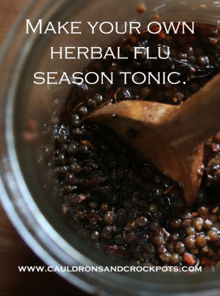 Herbal Flu Season Tonic