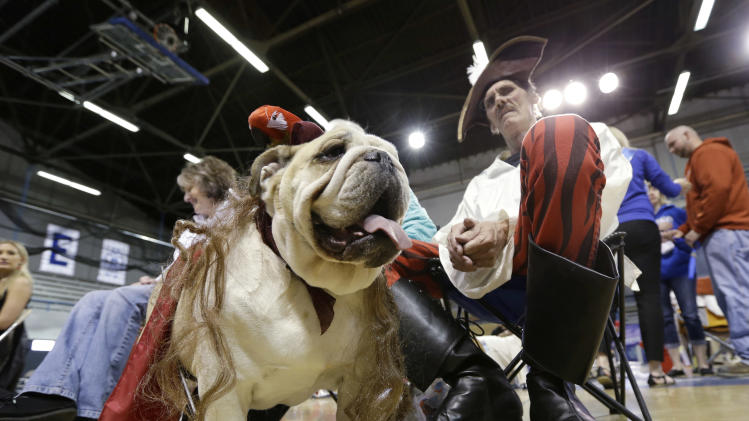 Dave Larson, of Des Moines, Iowa, sits with his bulldog Ramone during the 34th annual Drake Relays Beautiful Bulldog Contest, Monday, April 22, 2013, in Des Moines, Iowa. The pageant kicks off the Drake Relays festivities at Drake University where a bulldog is the mascot. (AP Photo/Charlie Neibergall)