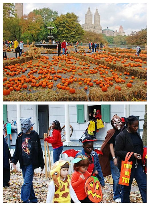 Central Park Pumpkin Festival - NYC, Oct. 27