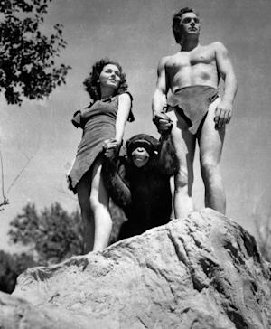FILE - A file photo shows Johnny Weissmuller, right, as Tarzan, Maureen O'Sullivan as Jane, and Cheetah the chimpanzee, in a scene from the 1932 movie Tarzan the Ape Man. A Florida animal sanctuary says Cheetah the chimpanzee from the Tarzan movies of the 1930s died Cheetah died on Dec. 24 of kidney failure at age 80. (AP Photo/ho, File)