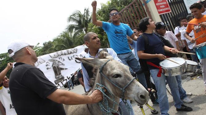 """People lead a donkey named """"Mr. Donkey"""" to the National Electoral Council in hopes of registering him to run for a seat on the National Assembly in Guayaquil, Ecuador, Thursday, Nov. 15 2012.  Daniel Molina, leader of the Mr. Donkey support group, said his group's goal was to raise awareness among voters about the seriousness of the National Assembly elections and the importance of choosing effective candidates. Although Mr. Donkey didn't get on the ballot for the Feb. 17, 2012 elections, supporters threw confetti and banged on drums to express their continued support. (AP Photo/Diario Expreso)"""