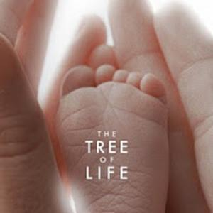 """The Tree of Life"" wins Best Picture from Denver Film Critics Society Awards."