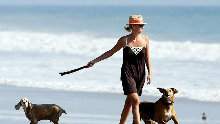 Theron Charlize Dogs