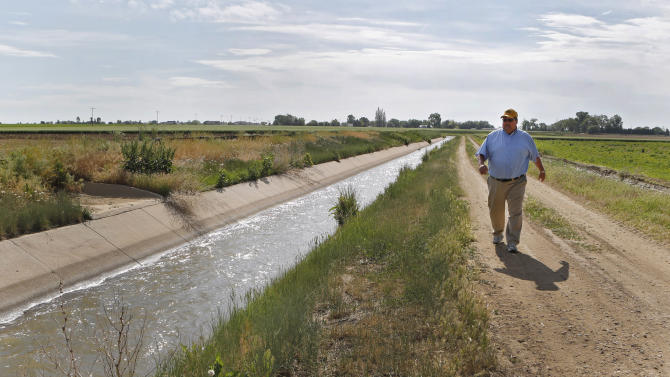 In this Friday, June 7, 2013, photo farmer Kent Peppler inspects one of his irrigation ditches that provides water to irrigate his crops on his farm near Greeley, Colo.  Peppler says he is fallowing some of his corn fields this year because he can't afford to irrigate the land, in part because deep-pocketed energy companies have driven up the price of water. (AP Photo/Ed Andrieski)