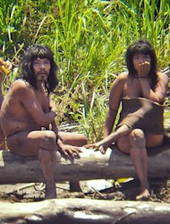 This Nov. 2011 image made available by Survival International on Tuesday Jan. 31, 2012, shows members of the Mashco-Piro tribe, photographed at an undisclosed location near the Manu National Park in southeastern Peru. According to Survival International the image is one of the closest sightings of isolated Amazon Indians ever recorded with a camera. (AP Photo/Diego Cortijo,Survival International)