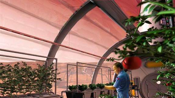Farming on Mars: NASA Ponders Food Supply for 2030s Mission