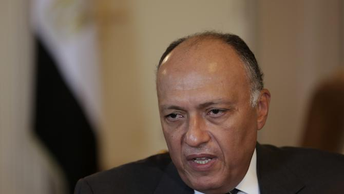 "Egyptian Foreign Minister Sameh Shukri speaks during an interview with the Associated Press, Thursday, July 17, 2014 in Cairo, Egypt. Shukri says Egypt's proposal for a cease-fire between Israel and Gaza is gaining momentum, and that it is the only viable way to stop an ""intolerable humanitarian situation.""(AP Photo/Maya Alleruzzo)"
