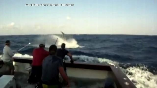 Giant Black Marlin Jumps on Boat in YouTube Video