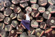 A worker prepares wood logs being for export on the outskirts of Yangon in 2010. The US Congress on Thursday extended a ban on imports from Myanmar, seeking to maintain pressure despite a series of reforms in the country that have prompted an easing of other sanctions
