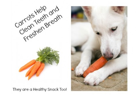 Carrots for Teeth