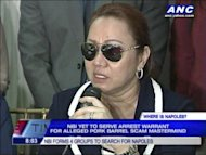 The manhunt is on for Janet Lim Napoles, the alleged mastermind of the so-called pork barrel scam. Justice Secretary Leila de Lima believes, Napoles is still free because she was tipped off about the arrest warrant.