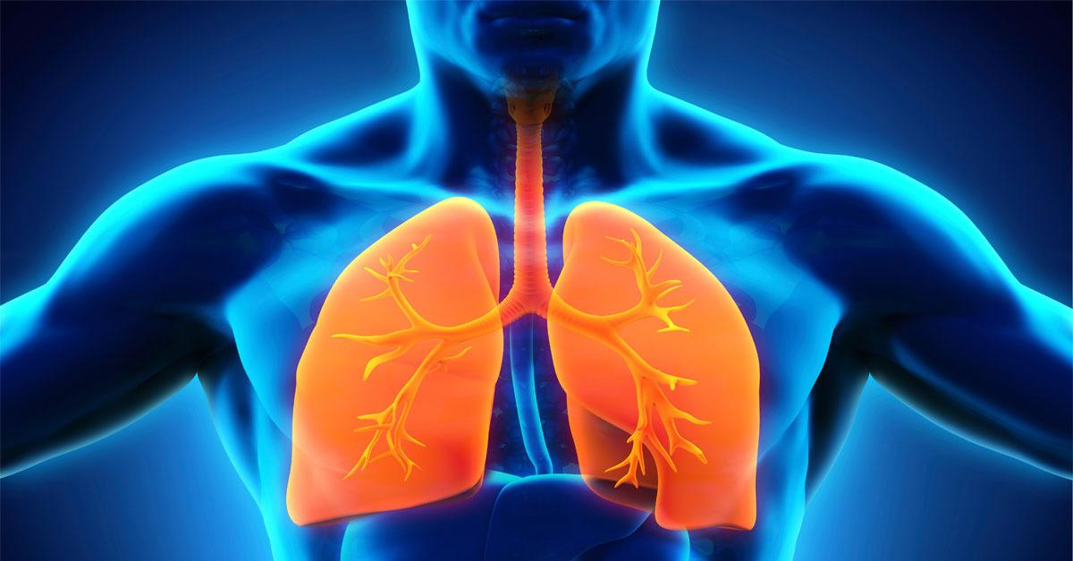 Regenerate Your Lungs