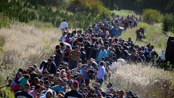 Migrants walk through the countryside after crossing the Hungarian-Croatian border near the village of Zakany to continue their trip north, on September 21, 2015