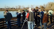 This image provided by the Colusa National Wildlife Refuge shows visitors watching for a male falcated duck at Colusa National Wildlife Refuge, Calif., Dec. 8, 2011. The bird, common in China, is an extreme rarity for California. Since it was spotted, thousands of visitors from the U.S. and Canada have flocked to the refuge to see it. (AP Photo/Colusa National Wildlife Refuge, Michael Peters)