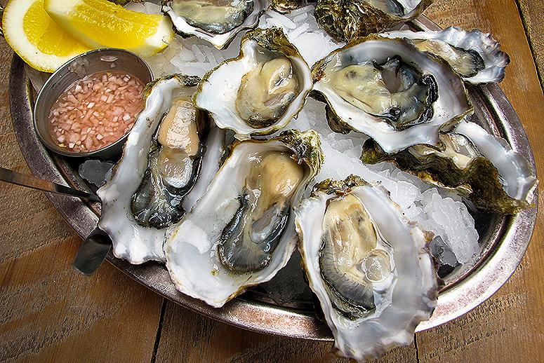 Good Oysters Come From Clean Water—and Good Oysters Make Water Cleaner