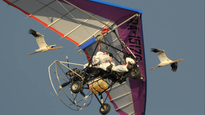 """FILE - In this Wednesday Sept. 5, 2012 file photo, Russian President Vladimir Putin flies in a motorized hang glider alongside two Siberian white cranes, on the Yamal Peninsula, in Russia.On Thursday, Nov. 1, 2012, Interfax reported that Putin's spokesman Dmitry Peskov said the president had pulled a muscle. """"It happened before Vladivostok. He was suffering from muscle pain then"""", Peskov said. Peskov told state news agency RIA Novosti this was an old injury and denied it was caused by his flight with cranes.  (AP Photo/RIA-Novosti, Alexei Druzhinin, Presidential Press Service, File)"""
