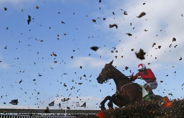 Sam Twiston-Davies on The New One jumps the final fence of the Champion Hurdle Challenge Trophy in Gloucestershire
