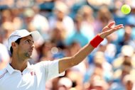 Novak Djokovic of Serbia serves to Roger Federer of Switzerland during the final of the Western & Southern Open at the Lindner Family Tennis Center in Mason, Ohio. Federer won his sixth title of the season as he beat Djokovic 6-0, 7-6 (9/7)