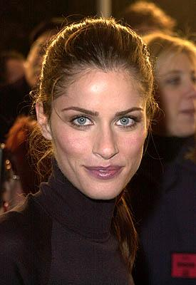 Amanda Peet at the Mann Village Theater premiere of Columbia's Saving Silverman