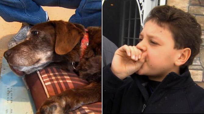 Boy's turkey call summons lost hard-of-hearing old dog