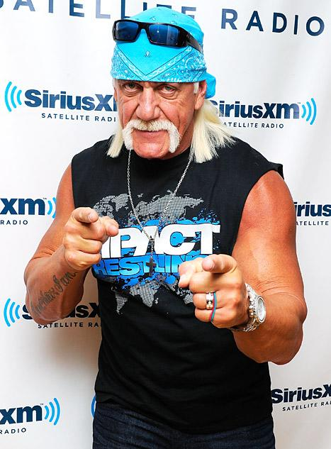 Hulk Hogan to Sue Sites Posting His Sex Tape: Report