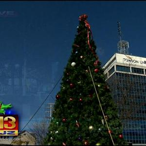 Towson Flips The Switch At Its 40th Annual Tree-Lighting Ceremony