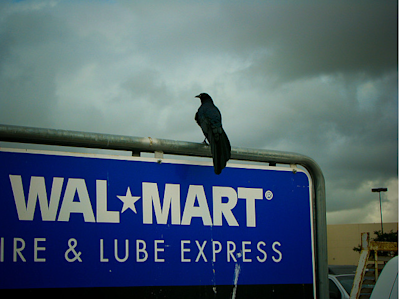 walmart ominous sky and crow