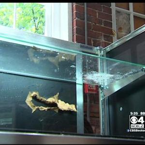 Family Owned Jewelry Store In Newburyport Robbed