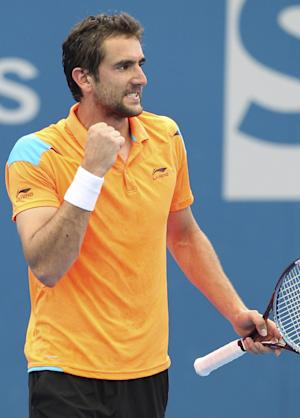Cilic defeats Haas to win Zagreb Indoors