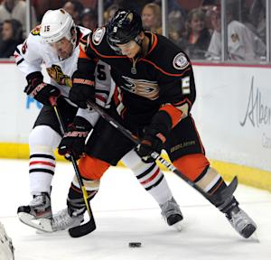 Chicago Blackhawks left wing Andrew Brunette (15) and Anaheim Ducks defenseman Luca Sbisa (5), of Italy, vie for the puck in the first period of an NHL hockey game in Anaheim, Calif., Sunday, Feb. 26, 2012. (AP Photo/Lori Shepler)