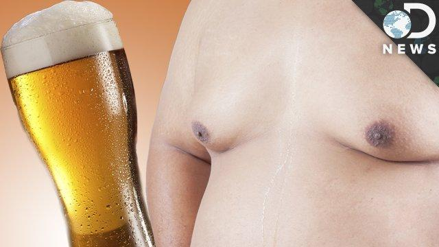 Is Beer Giving You Man Boobs? - DNews