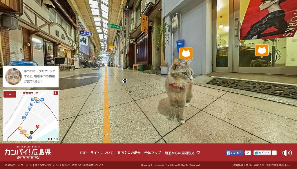 Japan eyes tourist boost with Google-style street view... for cats