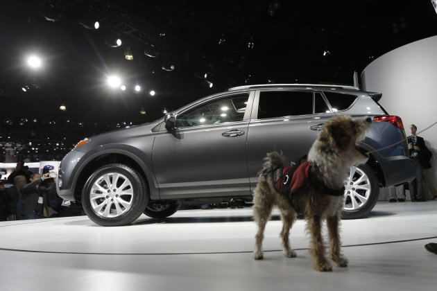 A service dog named Cookie walks around the Toyota RAV4 during it's world debut at the LA Auto Show in Los Angeles, Wednesday, Nov. 28, 2012. The annual Los Angeles Auto Show opened to the media Wedne