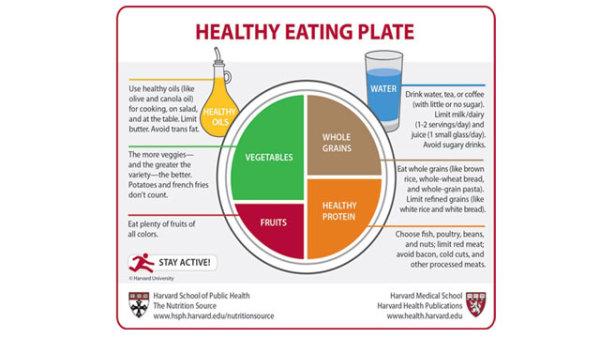 harvard healthy eating plate pdf