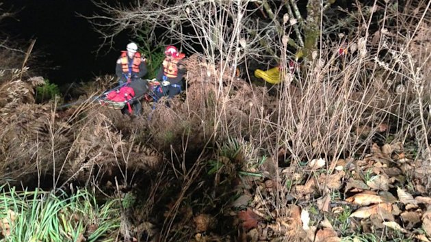 Couple Survives After Car Plunges 45 Feet Into Oregon River (ABC News)