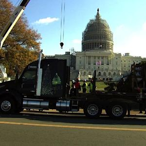Capitol Christmas tree arrives in D.C.