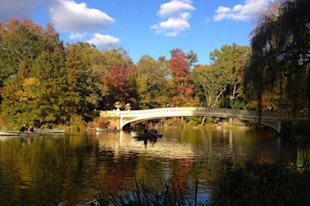 The Bow Bridge in Central Park.