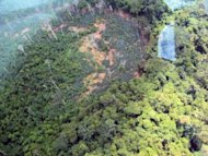 <p>A deforested area near the settlement of an uncontacted Yanomami tribe, inside Yanomami territory in Roraima, on the border between Brazil and Venezuela in November 2011. Venezuelan investigators say they have found no evidence of an alleged massacre of up to 80 members of the Yanomami indigenous group by illegal Brazilian gold miners.</p>